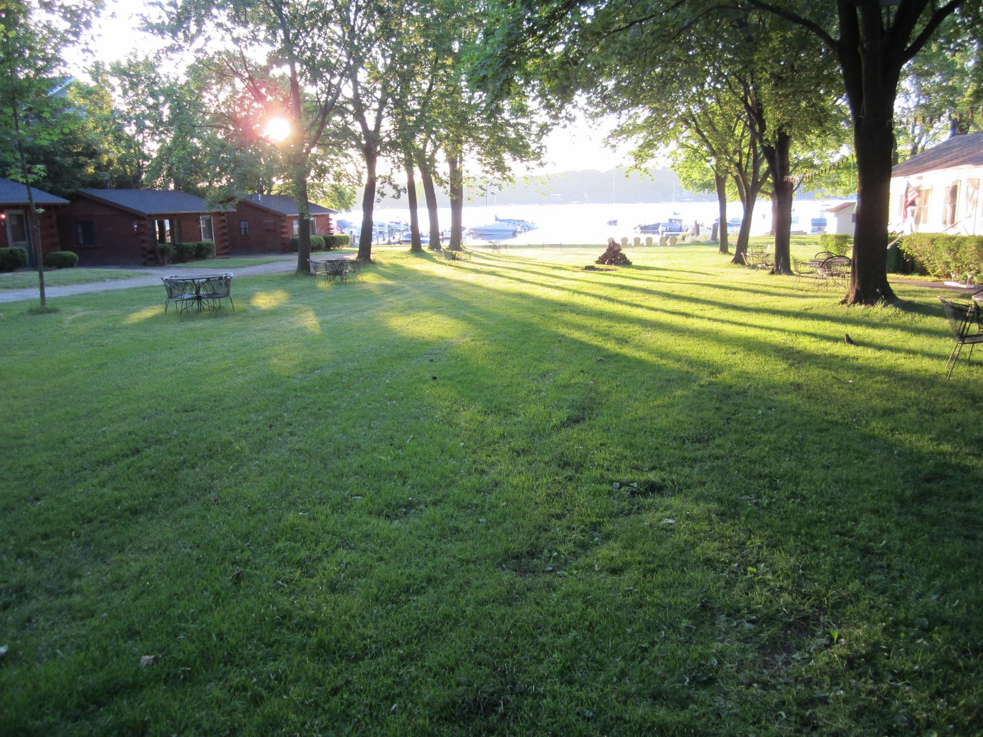 Lawn at dawn 2